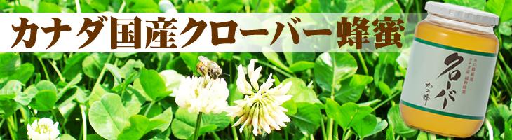 カナダ産クローバー蜂蜜(はちみつ)
